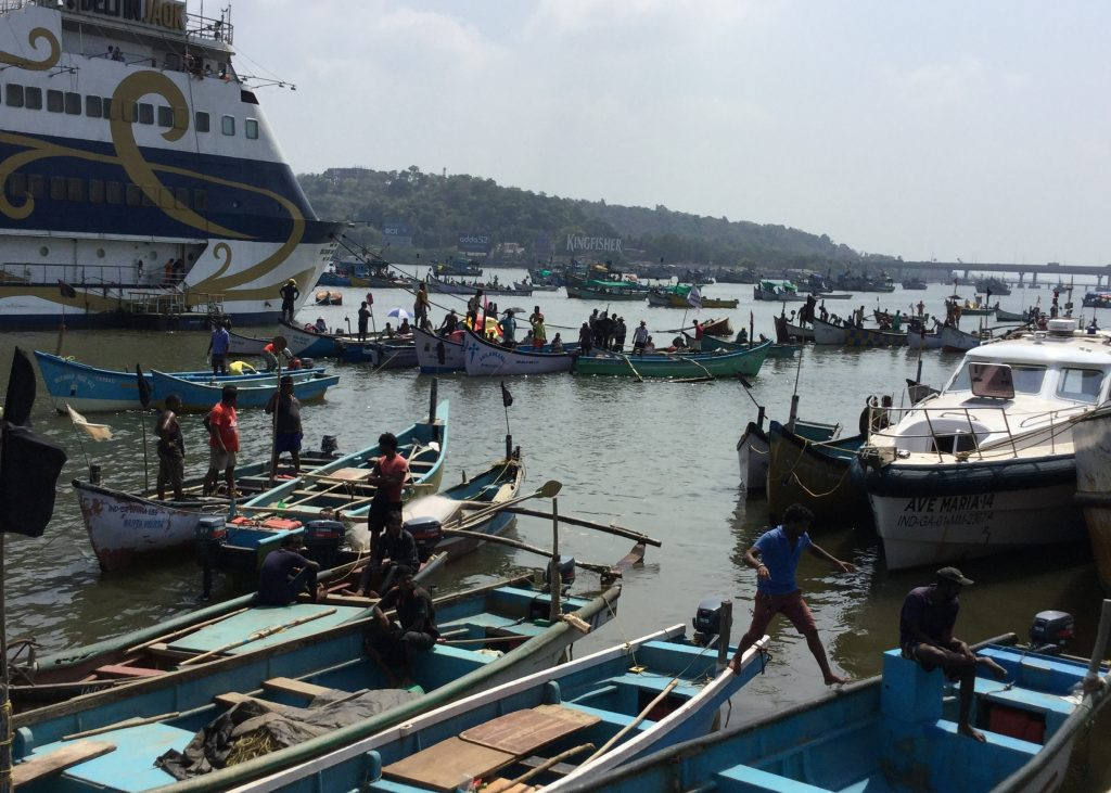 In May 2016, the fishing community in Goa held a protest to call for a ban on LED lights on fishing trawlers (there are concerns among the fishing community that the use of these lights could lead a reduction in the fish stocks). Part of the protest took place on the river with fishing boats parked between the Mandovi Bridge and the Panaji Ferry point.